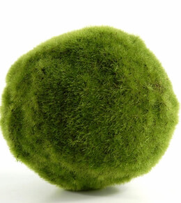 Moss Ball Artificial 5in