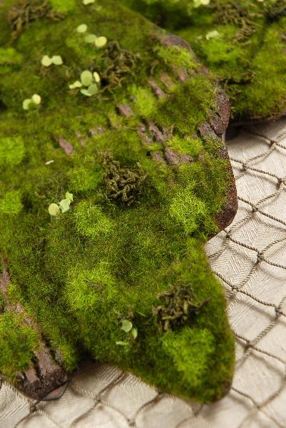 Foam Moss Tree Bark  14 X 6.5in