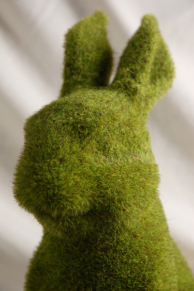 Moss Covered Bunny 12in