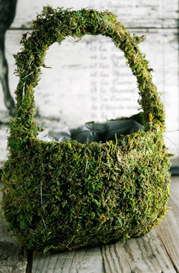 11in Preserved Moss Covered Basket