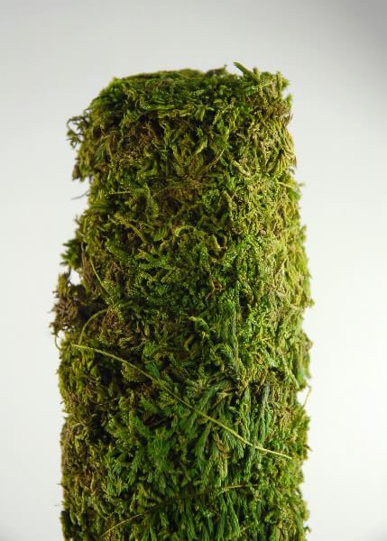 Moss Covered Pole 18 Quot X 2 Quot