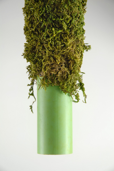 "Moss Covered Pole 18"" x 2"""
