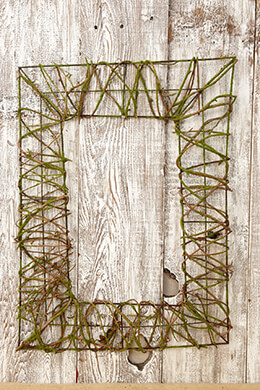 Moss Frame  18 x 24in