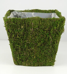 "Moss Covered Pot w/Liner 6.5"" Square x 6"" Tall"