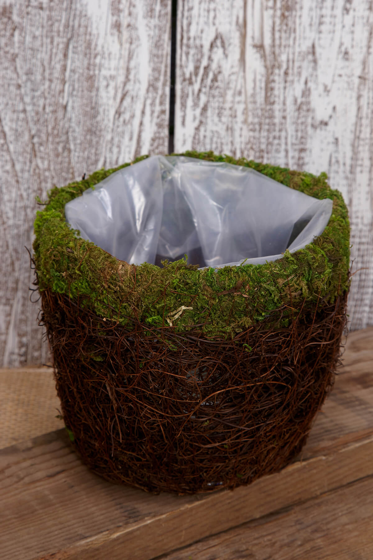 Moss Planter 6in