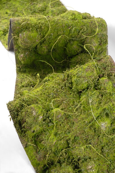 Moss Runners Artificial 12 Quot X 72 Quot