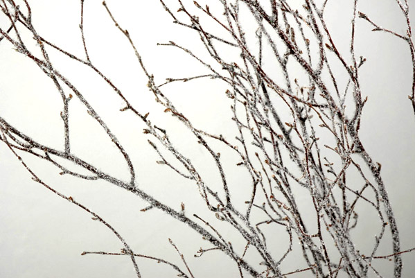 5 natural 4 39 birch branches with glitter snow