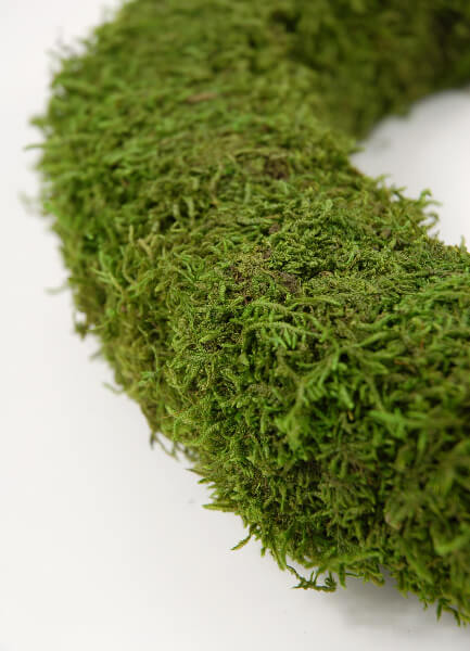 "Preserved Moss 12"" Wreath"