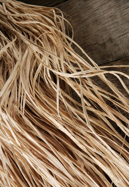 Natural Raffia Bundle 48 in. Trimmed