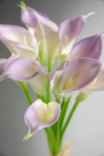 Natural Touch Mini Lilac Calla Lily Bouquet 12 Flowers