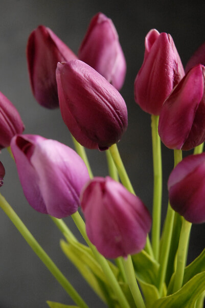 Natural Touch Silk Flower Mini Magenta Tulip Bouquet 15\u0026quot;