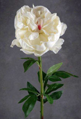 Natural Touch Large Cream White Peony Flowers