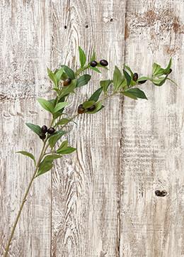 Olive Branch 31.5in