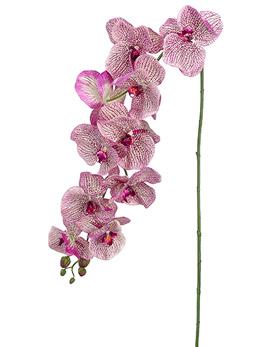 Phalaenopsis Orchid Spray  Purple Mauve 60in