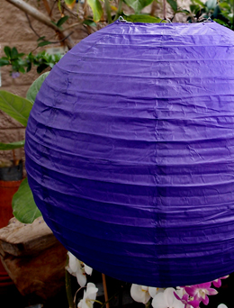 10 Royal Purple 10in Paper Lanterns  (PACK of 10)