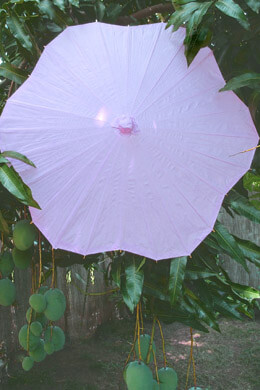 Large Lavender Scalloped Edge Paper & Bamboo Parasols 32""