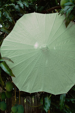 "Parasols 32"" Lime Green Scalloped Paper & Bamboo Parasol Umbrellas"