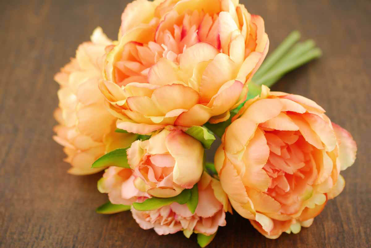 Coral Orange Peony Bouquet : peony bouquet coral 9 4 from www.save-on-crafts.com size 1200 x 803 jpeg 75kB