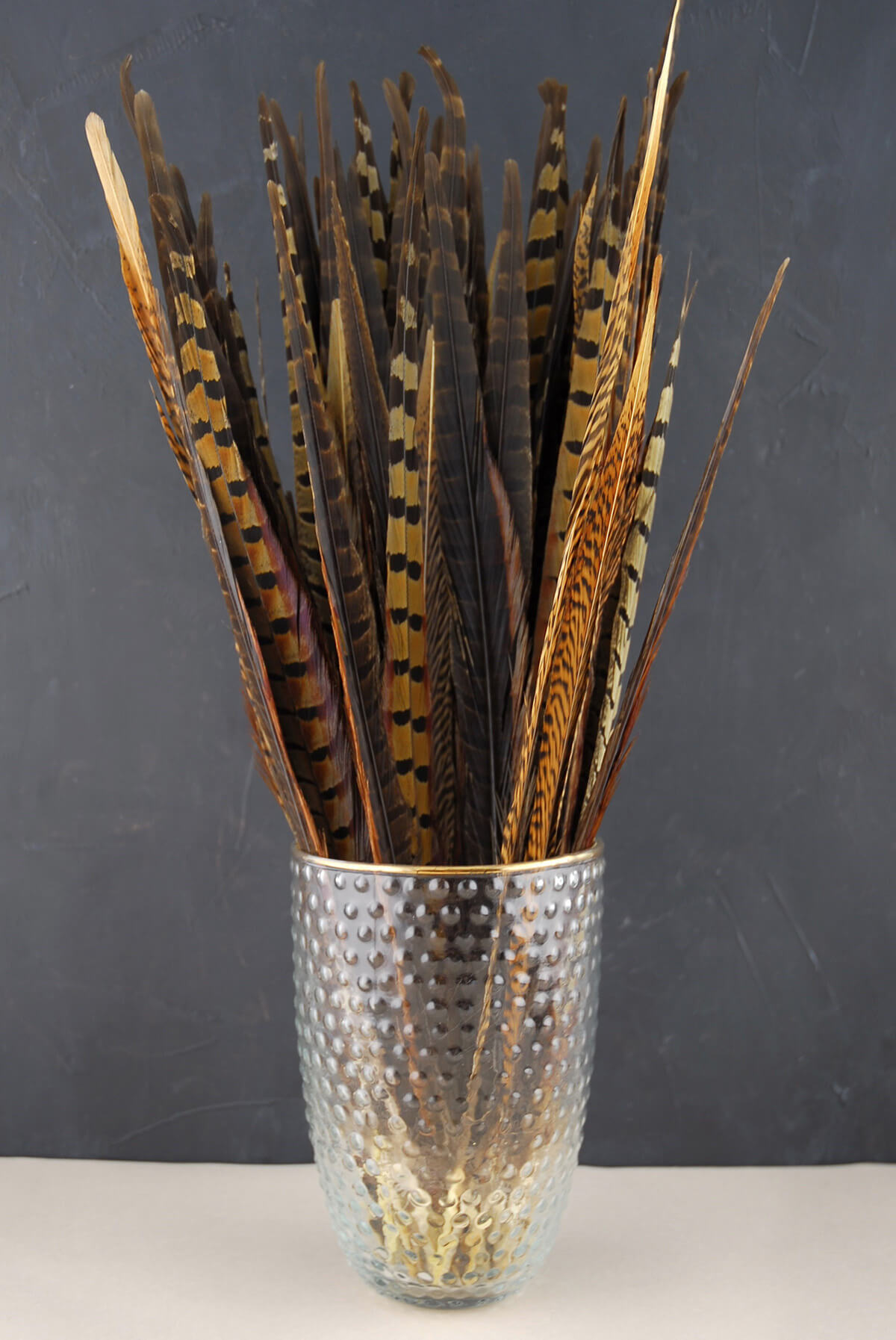 Pheasant tail feathers inch