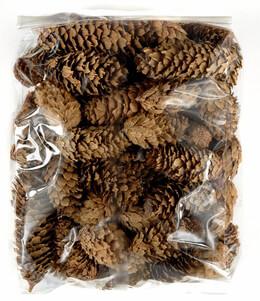 Sitka Spruce Pine Cones 2-3 In. 3 quarts