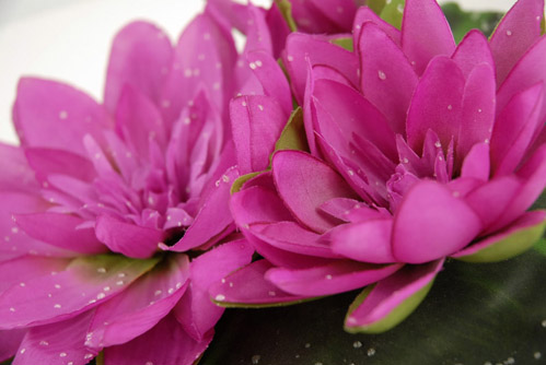 Fuchsia Pink Large Floating Water Lily Flower 9in