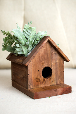 Plantable Birdhouse 6in