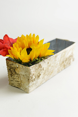 "Birch Bark Planter 12"" x 4"""