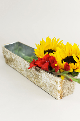 "Birch Bark Planter 18"" x 4"""