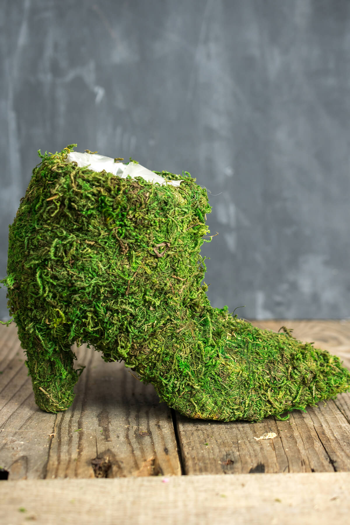 Moss Covered Ladies Boot 7 Quot Topiary Planter