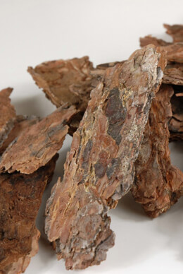 Ponderosa Pine Puzzle Bark Tree Pieces 1/2 lb