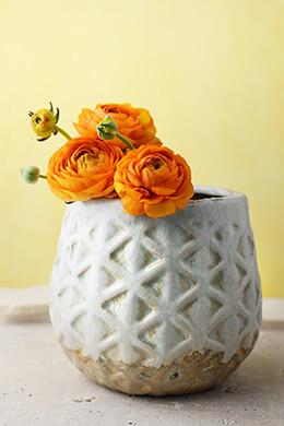 """Cream & Aqua Ceramic 6-1/2"""" Congo Pot"""