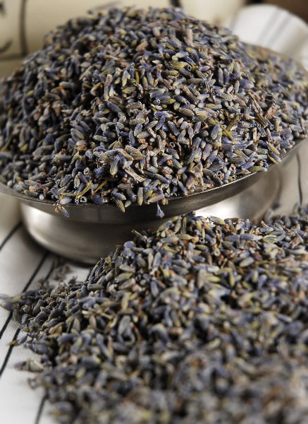 Lavender 1 lb. Premium Grade  Fragrant
