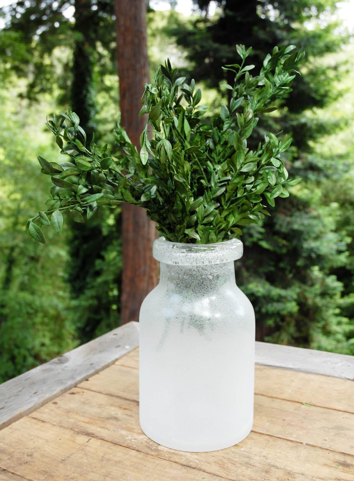 Preserved Boxwood Bundle In Natural Green 5oz