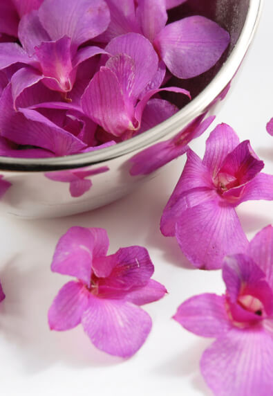 30 Pink Preserved  Orchid Flowers
