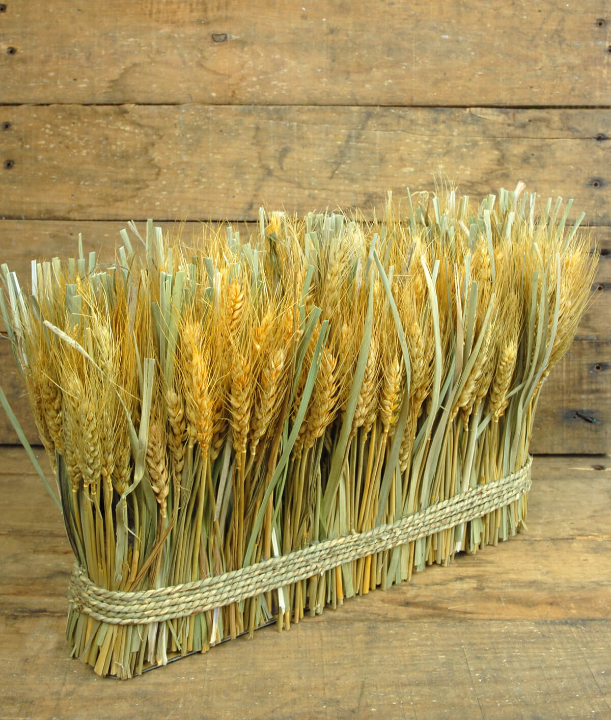 Natural Preserved Wheat Bundle 10 Quot X 15 Quot