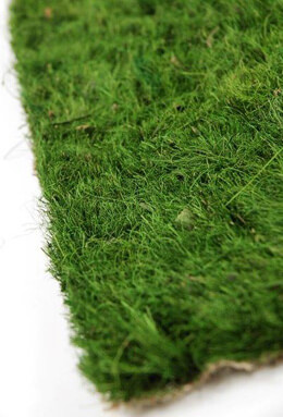 Preserved Grass Mat 12 x 12