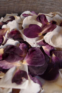 Freeze Dried Amethyst & Cream Soft Rose Petals 5 Cups