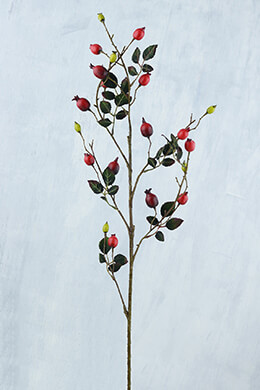 Rosehip Branch Red 31in