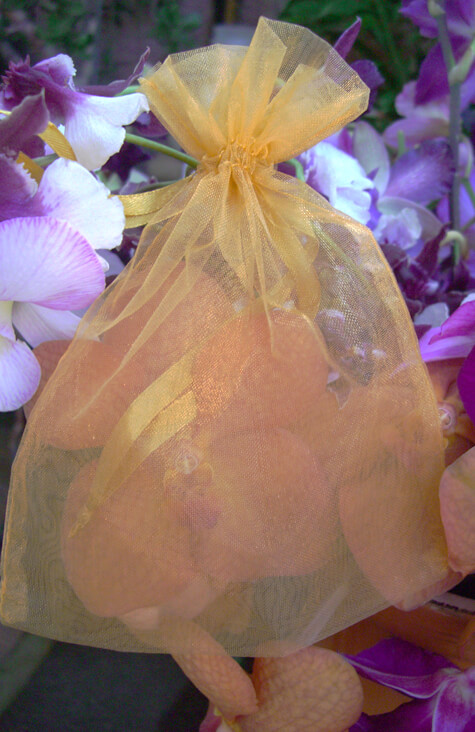 24 Organza Favor Bags Gold 5x6