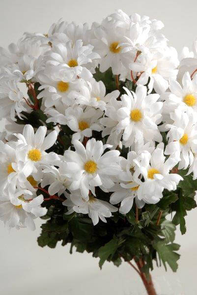 Silk White Daisies Bouquet 72 Flowers