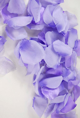 Silk Rose Petals Purple Two Tone 100 Petals