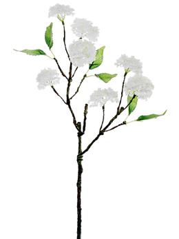 White Snowball Hydrangea Branch  20in