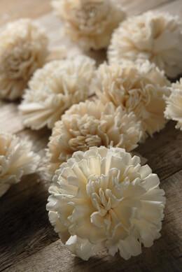 Sola Flower Carnations  (12 flowers)