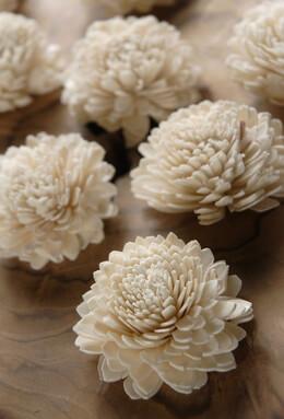 "Sola Flowers Zinnias 12 Flowers 2.25"" wide"