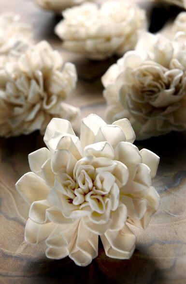 12 Folded Sola Flowers 2in