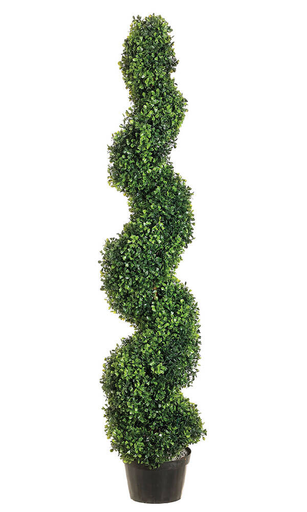 Boxwood Topiary 4ft SHIPS FREE