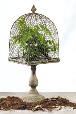 "Tuscany Topiary Pedestal Chicken Wire Stand 10""x27"