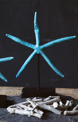 "Turquoise Starfish 12"" Display"