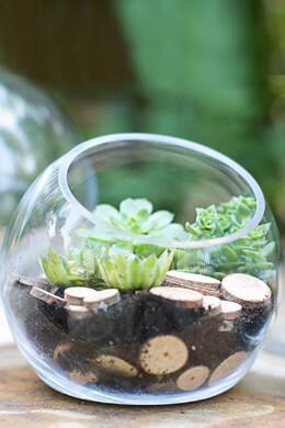 Studio Glass Terrarium & Candleholder Bowl  7.5 x 7
