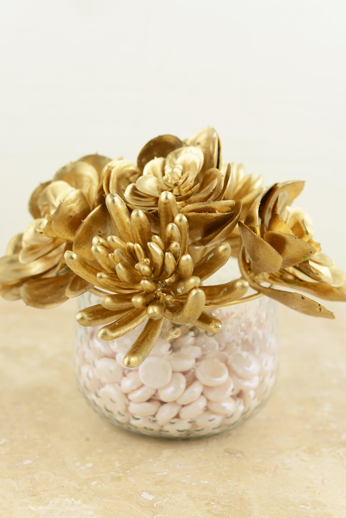 gold succulents 6 5